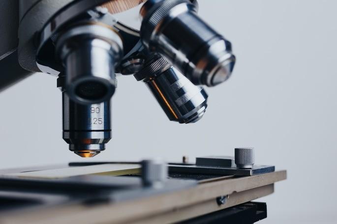 biologia ciencias facticas y formales