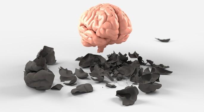 neuropsicología ramas de la psicologia