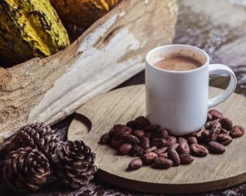 Cacao y cocoa