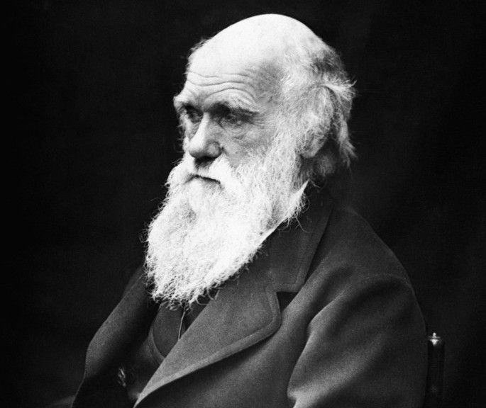 Charles Darwin inteligencia naturalista