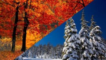 Colores cálidos y fríos