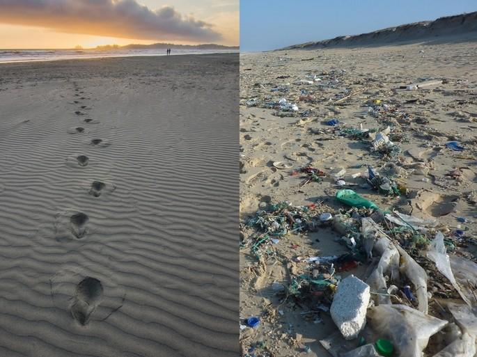 basura diseminada en una playa como contaminacion visual