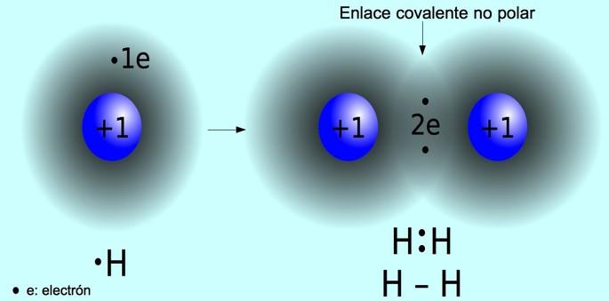 enlace covalente no polar entre dos hidrogenos que comparten un electron