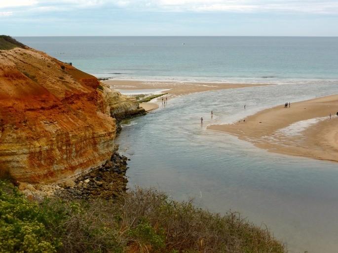 estuario donde confluyen el rio y el mar es un ecosistema mixto