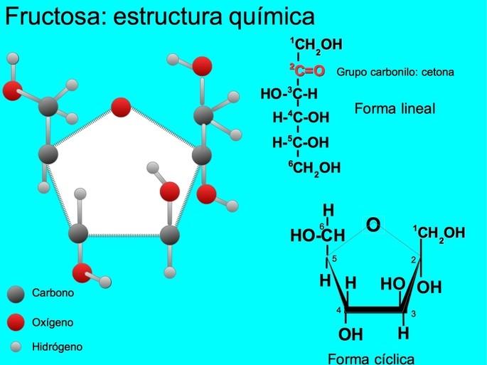 Fructosa estructura química
