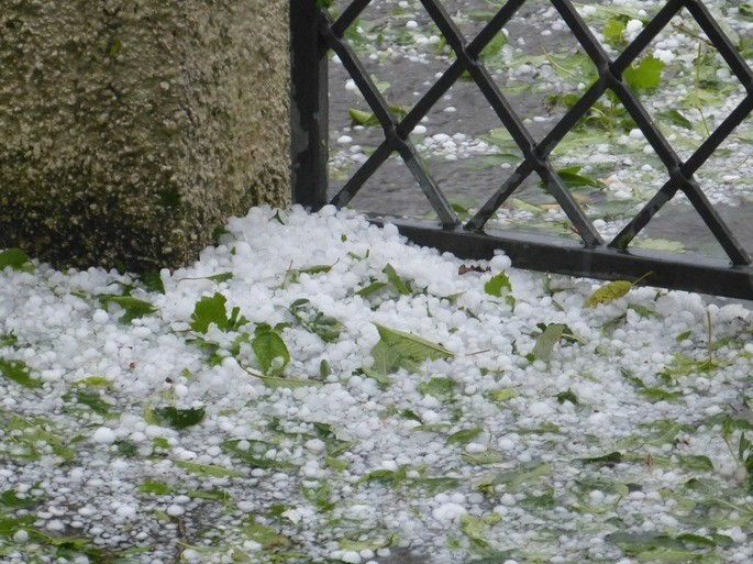 granizo acumulado sobre un jardin