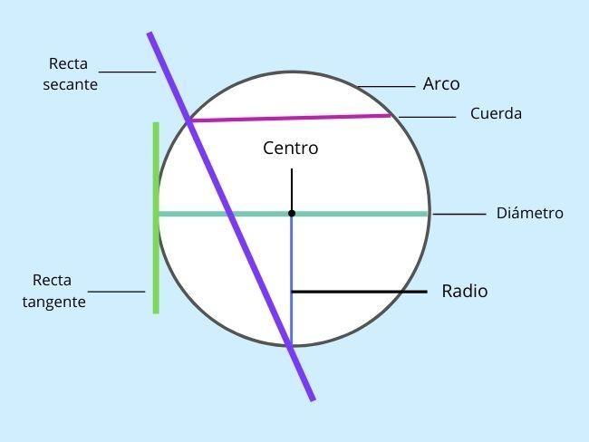partes de un círculo