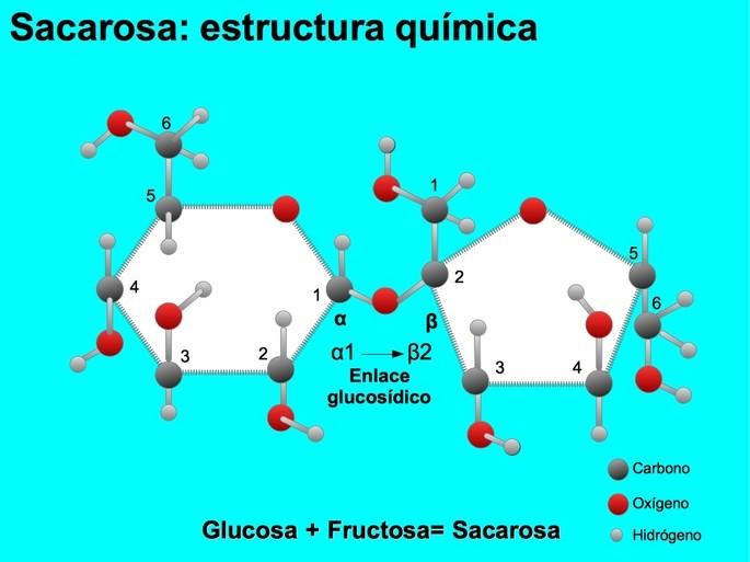 Sacarosa estructura química