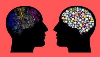 24 tipos de aprendizaje