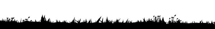 perfil vegetal de la tundra