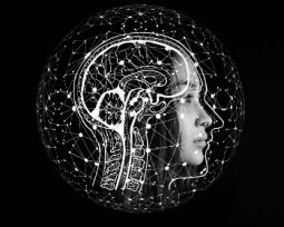 18 tipos de inteligencia. ¿Con cuáles te identificas tú?